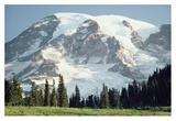 Mt Rainier, Cascade Mountains, Washington Posters by Tim Fitzharris