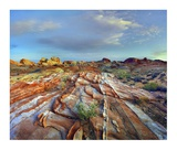 Rainbow Vista, Valley of Fire State Park, Nevada Print by Tim Fitzharris