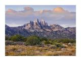 Organ Mountains, Chihuahuan Desert, New Mexico Print by Tim Fitzharris