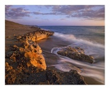Beach at dusk, Blowing Rocks Preserve, Florida Posters by Tim Fitzharris