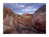 Meeks Mesa, Capitol Reef National Park, Utah Posters by Tim Fitzharris