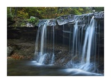 Cayuga Falls, Ricketts Glen State Park, Pennsylvania Print by Tim Fitzharris
