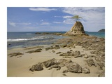 Point with tree on Penca Beach, Costa Rica Prints by Tim Fitzharris