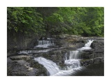 Dismal Falls, Jefferson National Forest, Virginia Prints by Tim Fitzharris