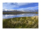 Carson Range reflected in Washoe Lake, Nevada Prints by Tim Fitzharris