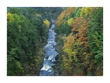 Ottauquechee River and Quechee Gorge, Vermont Print by Tim Fitzharris