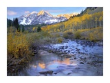 Maroon Bells and Maroon Creek in autumn, Colorado Prints by Tim Fitzharris