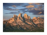 Organ Mountains near Las Cruces, New Mexico Prints by Tim Fitzharris