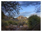 Organ Mountains near Las Cruces, New Mexico Prints by Tim Fitzharris