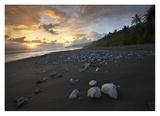 Rocks on beach, Corcovado National Park, Costa Rica Prints by Tim Fitzharris