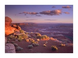 Green River Overlook, Canyonlands National Park, Utah Posters by Tim Fitzharris