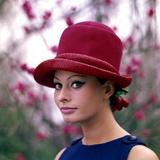 Portrait of Sophia Loren Reproduction photographique par Mario de Biasi