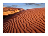 Sand dunes, Coral Pink Sand Dunes State Park, Utah Posters by Tim Fitzharris