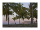 Moon setting, Playa Carillo, Guanacaste, Costa Rica Prints by Tim Fitzharris