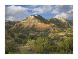 Sandstone mountains, Palo Duro Canyon State Park, Texas Posters by Tim Fitzharris