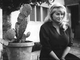 Anita Ekberg in Her Residence Fotografisk trykk av Marisa Rastellini