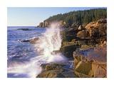 Atlantic Coast near Thunder Hole, Acadia National Park, Maine Print by Tim Fitzharris