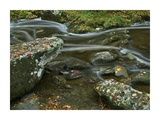 Laurel Creek, Great Smoky Mountains National Park, Tennessee Prints by Tim Fitzharris