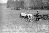 Walk-On on a Carriage Photographic Print by Mario de Biasi
