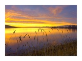 Sunrise at San Luis Reservoir, San Joaquin Valley, California Print by Tim Fitzharris