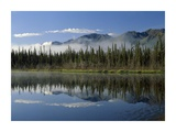 Boreal forest along lake edge, Nutzotin Mountains, Alaska Posters by Tim Fitzharris