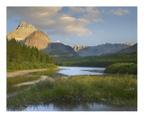 Mount Wilbur at Fishercap Lake, Glacier National Park, Montana Print by Tim Fitzharris