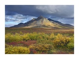 Ogilvie Mountains, Tombstone Territorial Park, Yukon, Canada Art by Tim Fitzharris