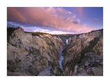 Lower Yellowstone Falls, Yellowstone National Park, Wyoming Print by Tim Fitzharris