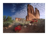 Paintbrush and the Organ Rock, Arches National Park, Utah Prints by Tim Fitzharris