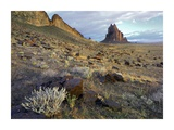 Shiprock, the basalt core of an extinct volcano, New Mexico Prints by Tim Fitzharris