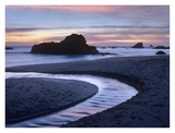 Creek flowing into ocean at Harris Beach State Park, Oregon Posters by Tim Fitzharris