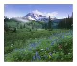 Incoming fog on Mount Rainier, Mount Rainier National Park, Washington Posters by Tim Fitzharris