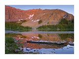 Palmyra Peak reflected in Alta Lake near Telluride, Colorado Prints by Tim Fitzharris