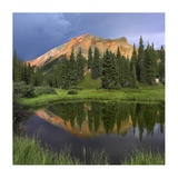 Red Mountain reflected in pond, San Juan Mountains, Colorado Posters by Tim Fitzharris