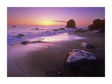 Enderts Beach at sunset, Redwood National Park, California Posters by Tim Fitzharris