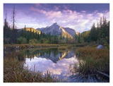 Mount Lorette and spruce trees reflected in lake, Alberta, Canada Posters by Tim Fitzharris