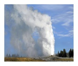 Old Faithful geyser spouting, Yellowstone National Park, Wyoming Posters by Tim Fitzharris