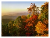 Blue Ridge Mountains from Bluff Mountain Overlook, North Carolina Posters by Tim Fitzharris