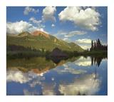Avery Peak reflected in beaver pond, San Juan Mountains, Colorado Prints by Tim Fitzharris
