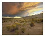 Storm clouds over Great Sand Dunes National Monument, Colorado Art by Tim Fitzharris