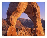 Delicate Arch and La Sal Mountains, Arches National Park, Utah Prints by Tim Fitzharris