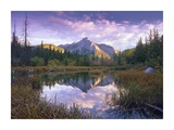 Mount Lorette and spruce trees reflected in lake, Alberta, Canada Prints by Tim Fitzharris