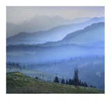 Mist over Absaroka Range, Yellowstone National Park, Wyoming Prints by Tim Fitzharris