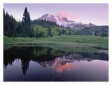 Mt Rainier reflected in lake, Mt Rainier National Park, Washington Prints by Tim Fitzharris