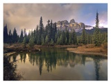Castle Mountain and boreal forest reflected in lake, Alberta, Canada Posters by Tim Fitzharris