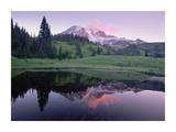 Mt Rainier reflected in lake, Mt Rainier National Park, Washington Posters by Tim Fitzharris