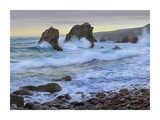 Cove and seastacks near Garrapata State, Beach Big Sur, California Prints by Tim Fitzharris