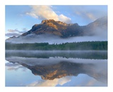 Morning light on Mt Kidd as seen from Wedge Pond, Alberta, Canada Prints by Tim Fitzharris
