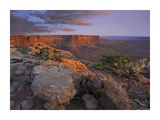 View from the Green River Overlook, Canyonlands National Park, Utah Art by Tim Fitzharris