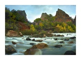 Court of the Patriarchs rising above river, Zion National Park, Utah Prints by Tim Fitzharris